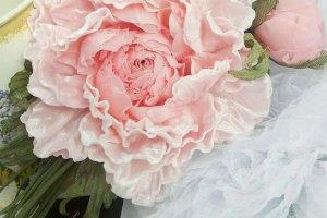 Робота Брошь - заколка пион Розовый бархат. Цветы из ткани