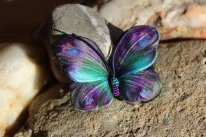 Робота Купити шпильку-брошка метелика Крісті