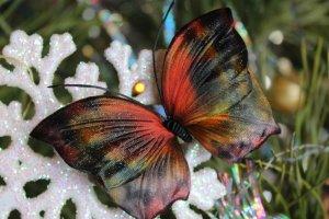 Купити шпильку метелика Еллі - ІНШІ РОБОТИ