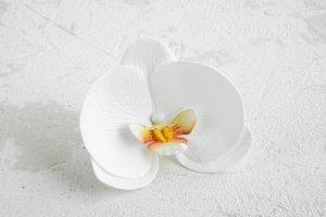 Шпильки в зачіску з білою орхідеєю фаленопсис - Опис