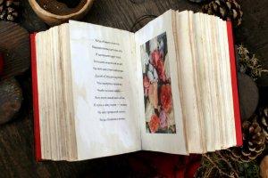 """Сьогодні я до вас з Книжкою Бажань """"Вишні"""" Gold - Опис"""