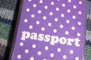 Робота Обкладинка на паспорт Бузкові горохи