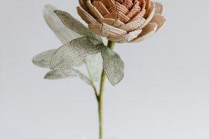Квітка півонія з бісеру - Опис