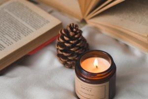 Робота Соєва свічка 100 мл.   Свічка в темному склі з кришкою