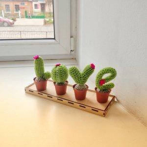 Оригінальний набір в'язаних кактусів